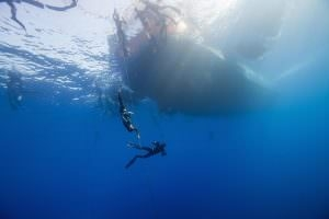 Matt Malina became vice world champion constant weight without fins free immersion freediving discipline